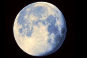 1. Paul Baartmans - Blue Moon (2015)